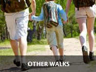 Other Walking