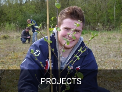 Our Bright Future/