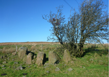 Hanging Thorn Cairn
