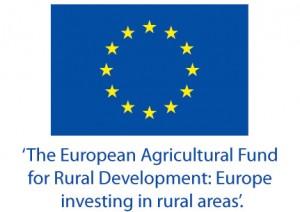 EU flag+slogan logo